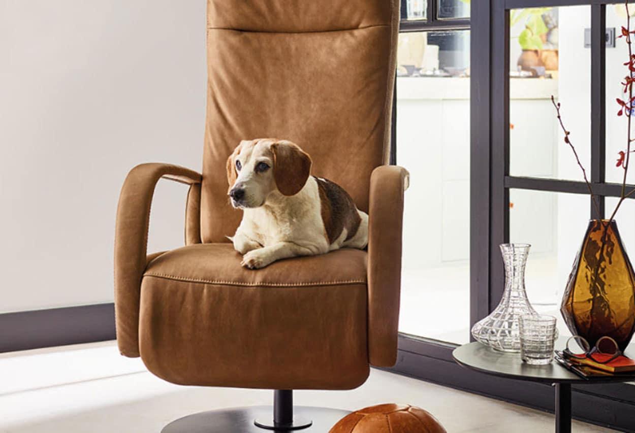 Relaxfauteuils en sta op stoelen