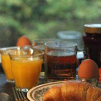 natuurhuisje ontbijt