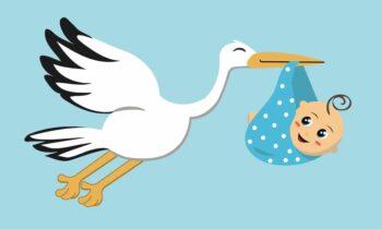 geboortevlag kraamcadeau